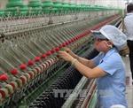 Nền kinh tế Việt Nam vận hành tốt dù thách thức gia tăng
