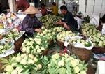 Thương hiệu thực phẩm Việt vẫn mờ nhạt trên thế giới