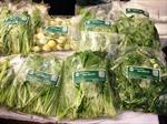 Kết nối sản xuất - phân phối thực phẩm sạch
