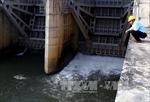 Thủy điện tại Gia Lai và Phú Yên thực hiện đúng qui trình vận hành
