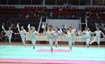 Khởi tranh Giải vô địch Thể dục nghệ thuật quốc gia 2016