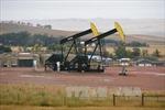 Giá dầu, vàng cùng đi lên