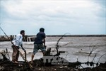 Cà Mau thiệt hại trên 1.400 tỷ đồng do biến đổi khí hậu