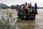 Hỗ trợ khẩn cấp hơn 1.100 tấn gạo cho người dân Bình Định