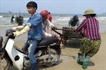"""Thị trường hải sản Hà Tĩnh """"tăng nhiệt"""" trở lại"""