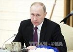 Tổng thống Putin khẳng định kinh tế Nga đang dần phục hồi