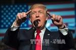 Ông Trump làm Tổng thống Mỹ sẽ ít ảnh hưởng kinh tế châu Âu