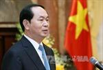 Chủ tịch nước Trần Đại Quang gửi điện thăm hỏi về vụ máy bay TU-154 của Nga gặp nạn