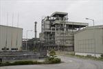 Phó Thủ tướng Vương Đình Huệ thị sát 2 nhà máy thua lỗ tại Hải Phòng