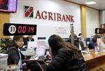 Agribank sẵn sàng phương án cung ứng tiền Tết