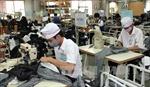 May Việt Tiến phấn đấu kim ngạch xuất khẩu đạt 1 tỷ USD