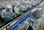 Nông lâm thủy sản 'gặt hái' 4,3 tỷ USD xuất khẩu đầu năm