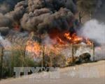 Bình Dương: Cháy lớn ở vựa phế liệu khiến nhiều người hoảng loạn