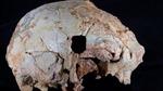 Xương sọ bí ẩn 400.000 năm tuổi khiến giới khoa học 'đau đầu'