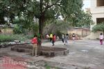 Trường chuẩn quốc gia, học sinh đi vệ sinh ở… đống rác