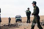 Algeria tiêu diệt 2 phần tử khủng bố nguy hiểm tại miền Đông