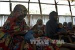3000 người Somalia sơ tán mỗi ngày do hạn hán nghiêm trọng
