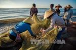 Hành động bảo vệ nguồn lợi thủy sản vùng ven biển Thanh Hóa