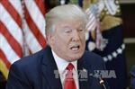 Tổng thống Mỹ: NATO không còn lỗi thời