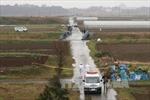Cảnh sát Nhật nghi kẻ tình nghi bắt cóc bé Nhật Linh vào xe cắm trại