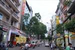 TP Hồ Chí Minh: Ra mắt phố chuyên doanh vàng bạc