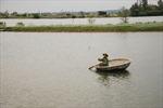 Những triệu phú nông dân bên bờ sông giới tuyến lịch sử