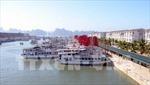 Quảng Ninh sẽ áp dụng giá vé mới cho khách du lịch qua cảng quốc tế Tuần Châu