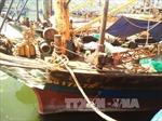 Bình Định có 17/44 tàu vỏ thép đóng theo Nghị định 67 bị hư hỏng
