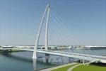 Đầu tư xây dựng cầu Thủ Thiêm 4