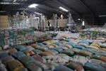 Tăng tỷ lệ gạo xuất khẩu mang thương hiệu 'gạo Việt Nam'