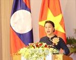 Hội thảo về vai trò của nữ đại biểu trong hoạt động Quốc hội