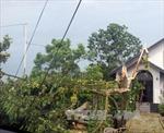 Lốc xoáy mạnh xuất hiện bất ngờ gây nhiều thiệt hại tại Lào Cai