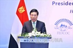 Cơ hội nâng cao hợp tác Việt Nam – Ai Cập