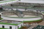 Nhà máy Giấy Lee & Man bốc mùi hôi do tốc bạt chắn bể chứa bùn