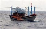 Cứu 11 thuyền viên gặp nạn trên biển khi đang đi tránh bão