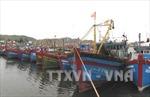 Phạt tới 8 triệu đồng với tàu thuyền neo đậu không đúng quy định