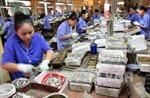 Nâng chất để hàng Việt lan tỏa rộng hơn