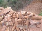 Phát hiện hầm chứa 27 quả đạn pháo trong vườn nhà dân