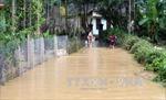 Cảnh báo lũ quét từ Quảng Ngãi đến Bình Thuận và ngập lụt ở Nam Bộ