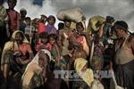 Bangladesh cho nhập cảnh 10.000 người Rohingya kẹt ở biên giới