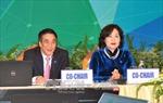 Việt Nam cần nhiều kinh nghiệm của các nền kinh tế APEC trong phát triển tài chính toàn diện