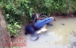 Nghệ An: Phát hiện thi thể người đàn ông dưới cống nước