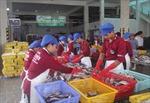 Kí kết tiêu thụ nông, hải sản an toàn giữa TP Hồ Chí Minh và Bình Thuận