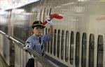 Tàu khởi hành sớm 20 giây, công ty Nhật Bản rối rít xin lỗi hành khách