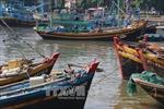 Ứng phó với bão số 14, Bình Thuận cấm tàu ra biển