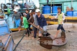 Ngư dân Khánh Hòa, Bình Thuận khẩn trương di dời tàu thuyền tránh trú bão số 14
