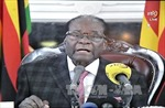 Tổng thống Zimbabwe không từ chức, tuyệt thực để phản đối bị bắt giam