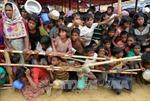 Myanmar, Bangladesh triển khai kế hoạch kết thúc khủng hoảng Rohingya