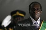 Ai thực sự hưởng lợi sau khi Tổng thống Zimbabwe bị phế truất?