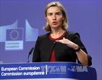 Nhiều nước EU kêu gọi Zimbabwe tôn trọng nguyện vọng người dân
